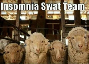 funny-pics-insomnia-swat-team